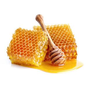 t_Groenselof-Lokeren-groentebox-honing