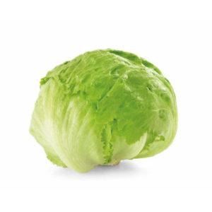 t_Groenselof-Lokeren-groentebox-ijsbergsla