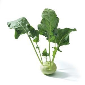 t_Groenselof-Lokeren-groentebox-koolrabi