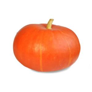 t_Groenselof-Lokeren-groentebox-pompoen-2