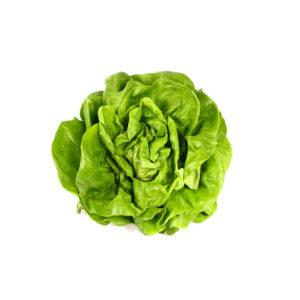 t_groenselof-Lokeren-groentebox-kropsla